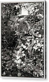 Camouflage Acrylic Print by Keith Woodbury