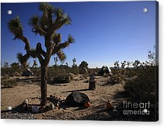 Camping In The Desert Acrylic Print by Nina Prommer