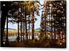 Campsite Dreams Acrylic Print by Janie Johnson