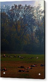 Can You Find The Survivor  Acrylic Print