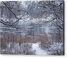 Canada Geese In The Winter II Acrylic Print