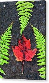 Canada, Nova Scotia, Cape Breton, Three Acrylic Print