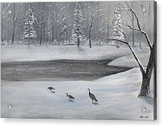 Canadian Geese In Winter Acrylic Print by Brandon Hebb