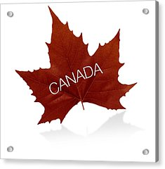 Canadian Maple Leaf Acrylic Print by Aged Pixel