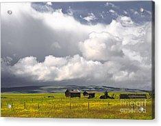 Canadian Prairie Acrylic Print