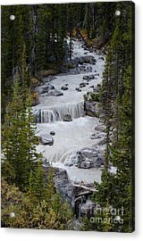 Canadian Rockies 2.0608 Acrylic Print by Stephen Parker
