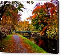 Canal Dream Acrylic Print by Rodney Lee Williams