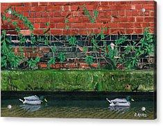 Canal Ducks Acrylic Print