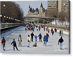 Acrylic Print featuring the photograph Canal Skate I by Jessie Parker