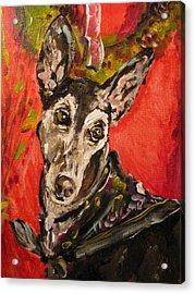 Candi Suzanne Acrylic Print