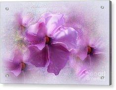 Candice Acrylic Print