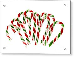 Candy Canes Acrylic Print by Elena Elisseeva