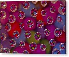 Candy Drops Acrylic Print by Brendan Quinn