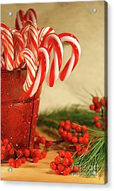 Candycanes With Berries And Pine Acrylic Print by Sandra Cunningham