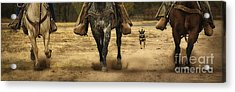 Canine Verses Equine Acrylic Print by Priscilla Burgers