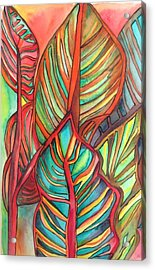 Canna Leaves Acrylic Print by Sacha Grossel