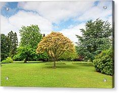Canon Hill Park, Birmingham, England, Uk Acrylic Print by Chris Hepburn