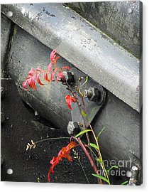 Acrylic Print featuring the photograph Canon Metal by Randi Grace Nilsberg