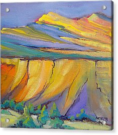 Canyon Dreams 33 Acrylic Print by Pam Van Londen