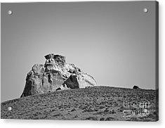 Canyon Point Utah IIi Acrylic Print by Dave Gordon