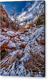 Canyon Stream Winterized Acrylic Print by Christopher Holmes