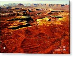 Canyonlands White Rim  Acrylic Print by Terry Johnson