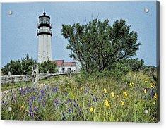 Cape Cod Lighthouse Acrylic Print by John Haldane