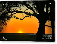 Cape Fear Sunset 2 Acrylic Print