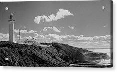 Cape Green Light Momochrome Acrylic Print by David Rich