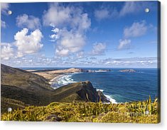 Cape Maria Van Diemen Northland New Zealand Acrylic Print by Colin and Linda McKie