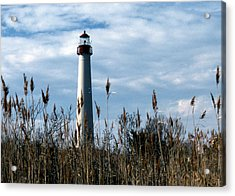 Cape May Light Acrylic Print by Skip Willits