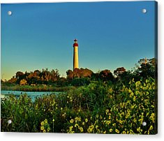 Cape May Lighthouse Above The Flowers Acrylic Print