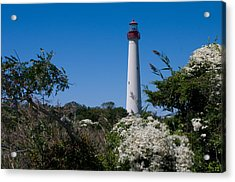 Acrylic Print featuring the photograph Cape May Lighthouse by Greg Graham