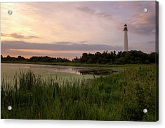 Cape May Lighthouse II Acrylic Print by Tom Singleton