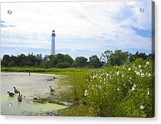 Cape May Lighthouse - New Jersey Acrylic Print by Bill Cannon