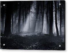 Capela Forest Acrylic Print