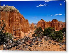 Capital Reef Acrylic Print by Donald Fink