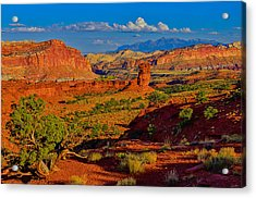 Capitol Reef Landscape Acrylic Print by Greg Norrell