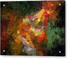 Capixart Abstract 90 Acrylic Print