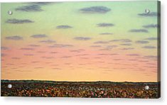 Caprock Sunrise Acrylic Print by James W Johnson