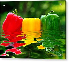 Capsicum Afloat Acrylic Print