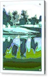 Captivate Acrylic Print by Tom Druin