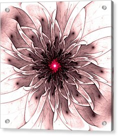 Captivating Acrylic Print by Anastasiya Malakhova