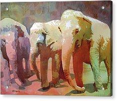 Captive Audience Acrylic Print