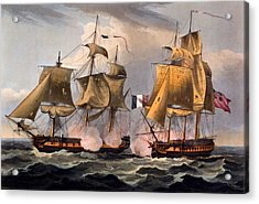 Capture Of Castor Acrylic Print by Thomas Whitcombe