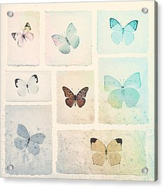 Captured Beauty Acrylic Print by David Ridley
