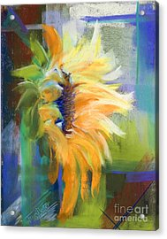 Captured Sunlight Acrylic Print by Tracy L Teeter