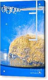 Carbonate-acid Reaction Acrylic Print by Martyn F. Chillmaid
