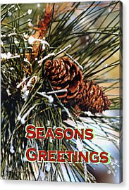 Card For The Winter Acrylic Print