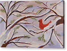 Cardinal Acrylic Print by Margaret Pappas